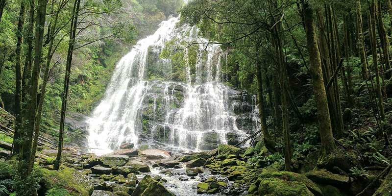 nelson-falls