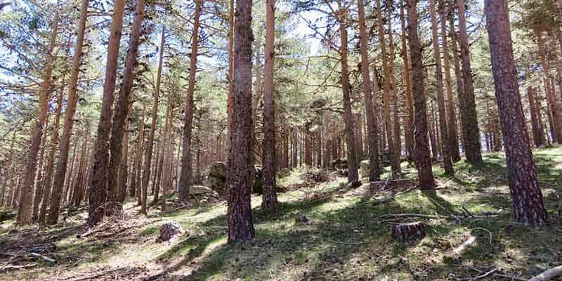 ruta-en-camper-sierra-de-guadarrama-2