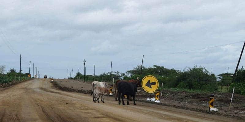 viaje sudafrica en camper estado de las carreteras