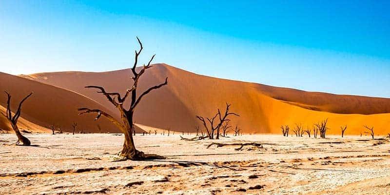 namiabia - mejores viajes en autocaravana