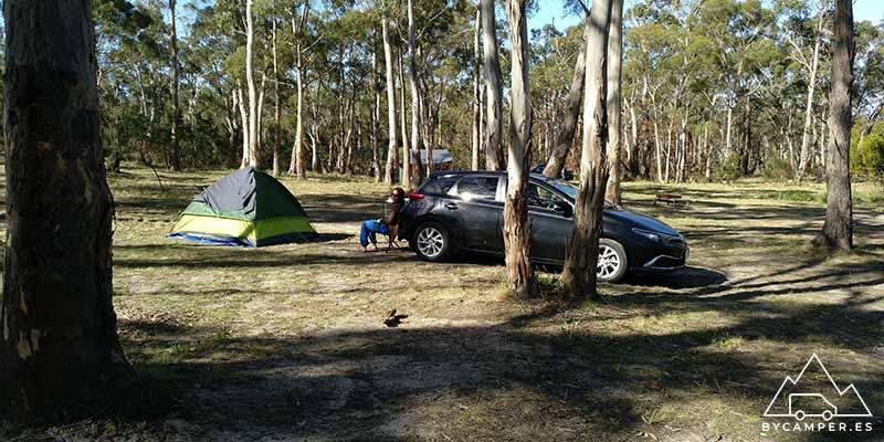 camping y tienda de campaña